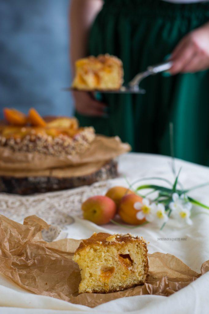 torta con albicocche, dolce estivo