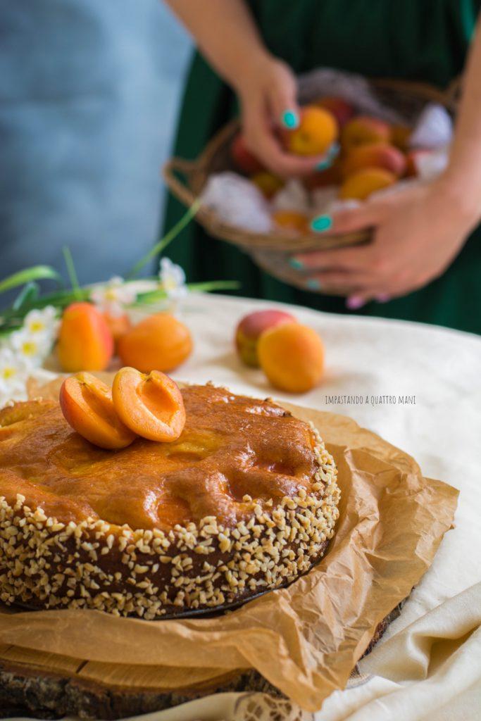torta alle albicocche senza burro, con olio, dolce estivo