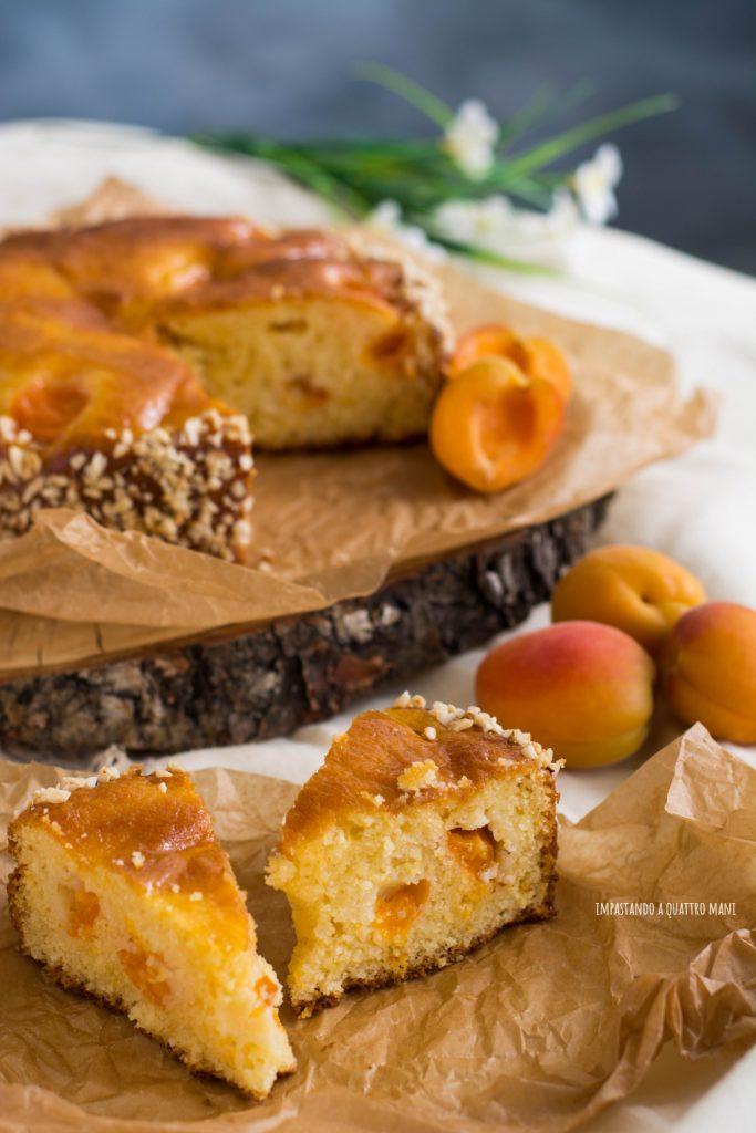 torta alle albicocche, senza burro, con robiola, torta estiva da credenza